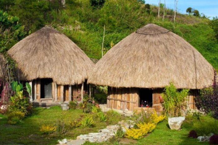 Rumah Adat Papua yang Unik Yaitu Honai